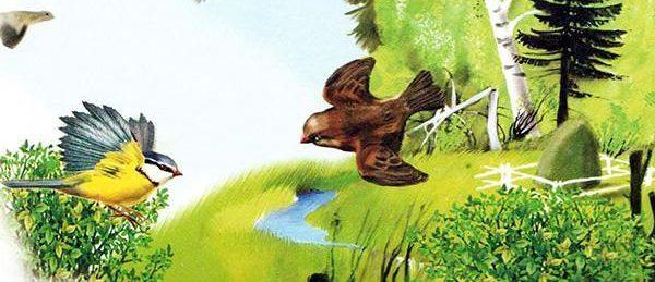 Сказки и рассказы о птицах