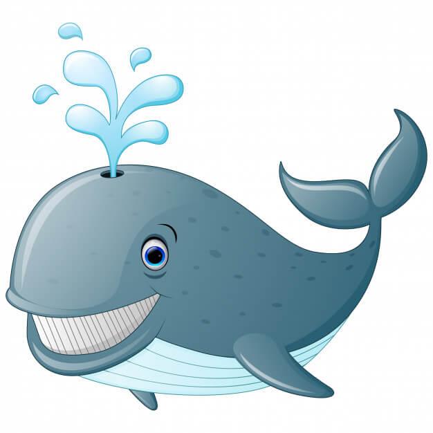 Детям о китах