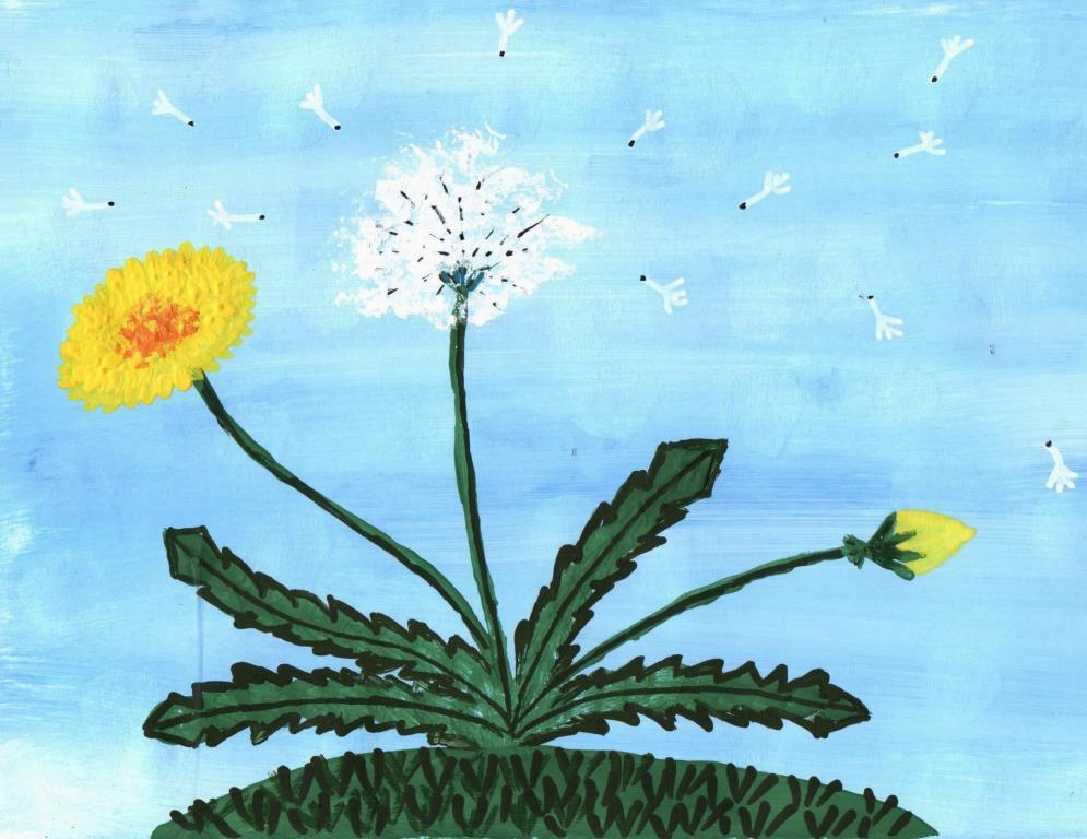 рисование для детей одуванчик